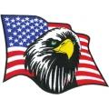 """Нашивка """"Американский орел"""" 24 х 18 см."""