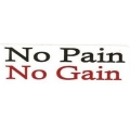 """Виниловый стикер на шлем/мотоцикл """"No pain no gain"""""""
